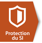 ico-ns-protection-si